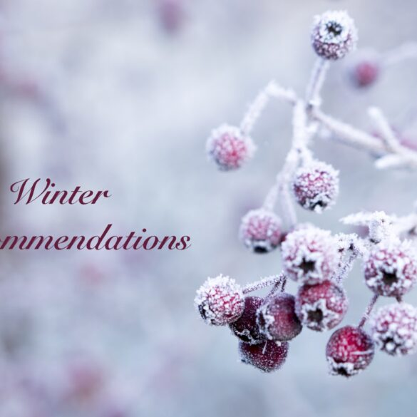 winter recommendation feature image