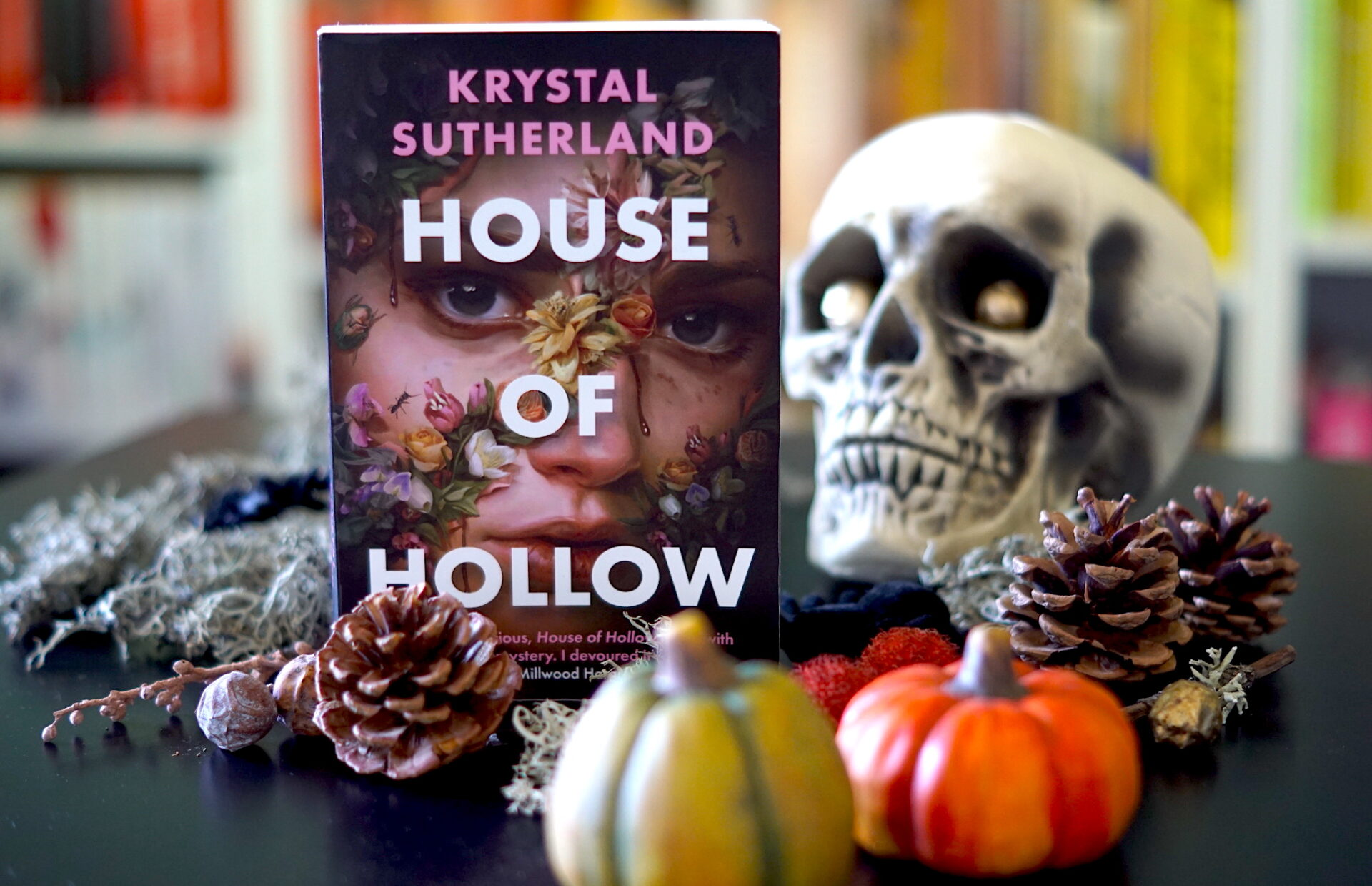house of hollow book display